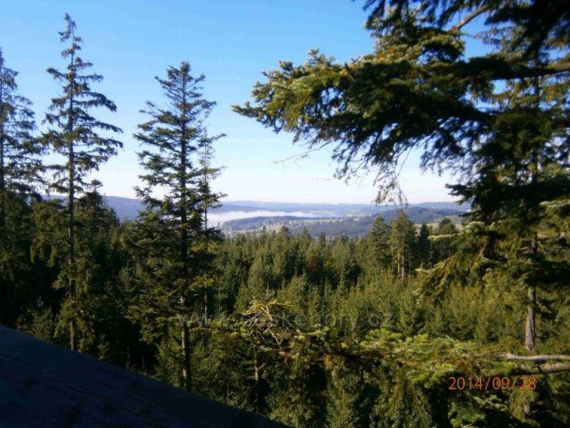 výhled korunami stromů z Lipenské rozhledny na přehradu