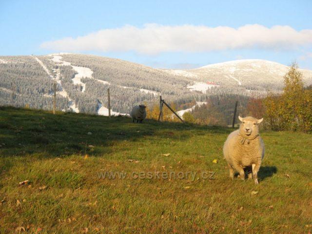 Lysá hora,Kotel