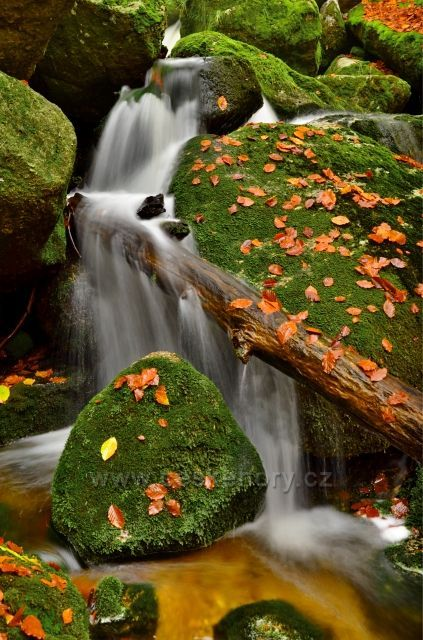 Malý vodopádek na Jelením potoce.