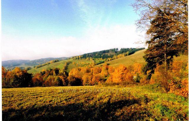 Podzimní odpoledne v Orlických horách