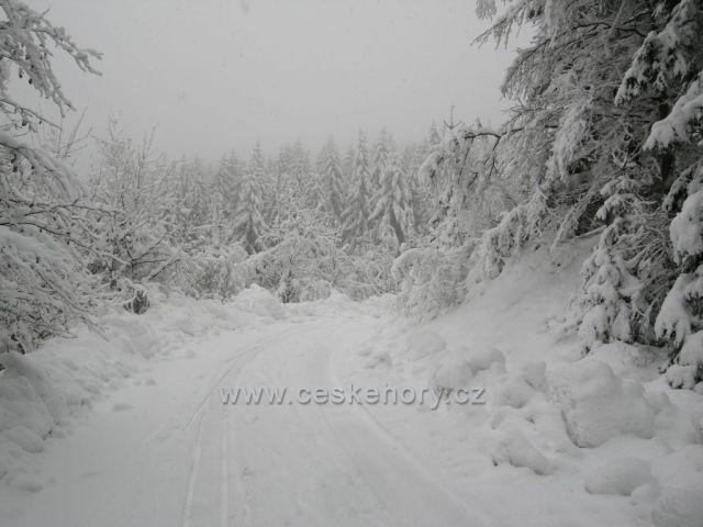 zima na Bedřichově