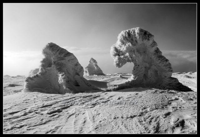 Sněhové sfingy na Jelením hřbetu v Jeseníkách
