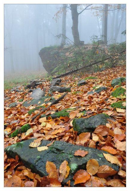 Chrášťanský vrch (CHKO Blanský les)