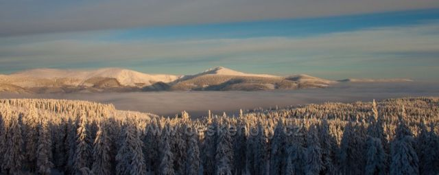 Sněžka z Černé hory