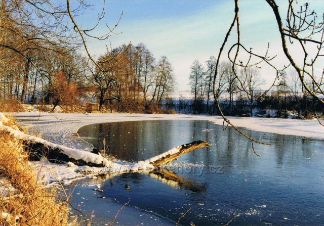 Zima u rybníku Petráň