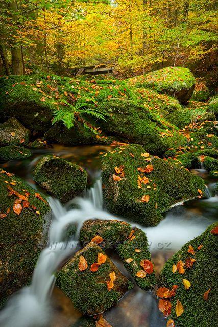 Podzim v Jizerských horách