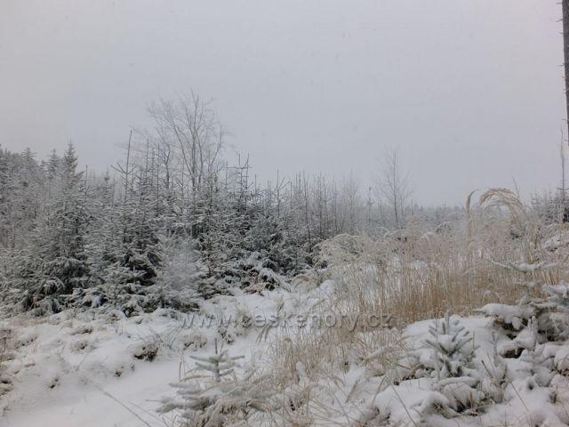 Pohádkovým lesem do Rožnova.
