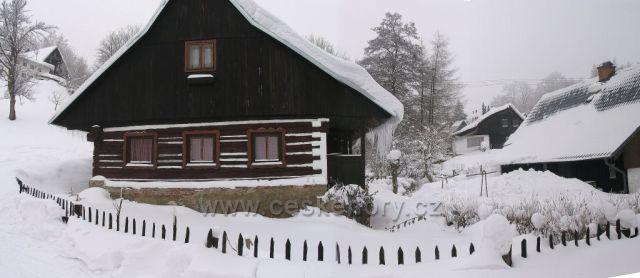 Patrovičky v zimě