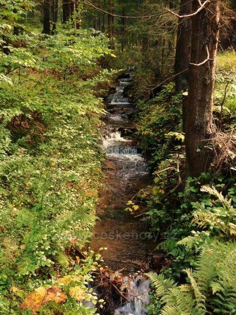 Těchonínský potok