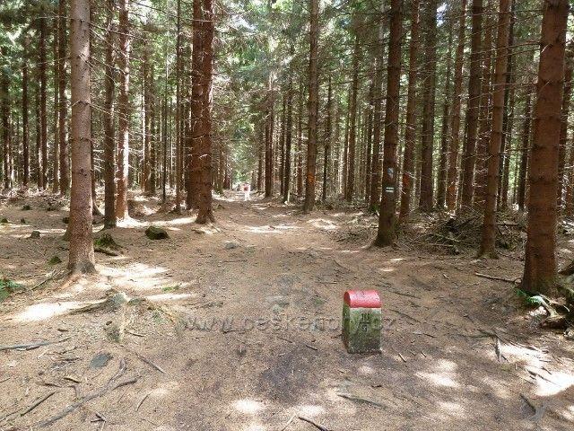 Hraniční cesta z Borůvkové Hory