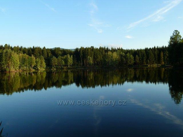 Venušiny misky - rybník Plavný alias U Dubu