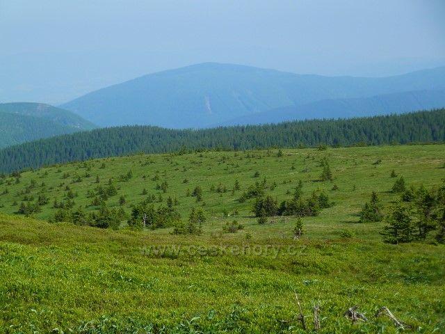 Panorama Jesenického pohoří od Vysoké hole