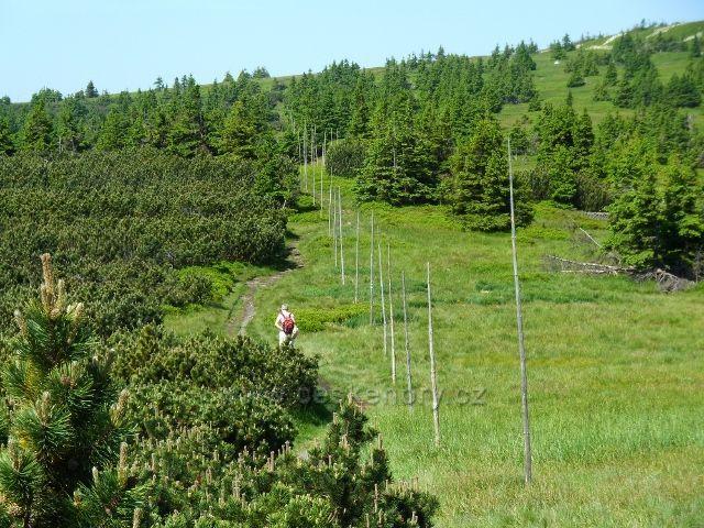 Po zelené TZ k úbočí Břidličné hory
