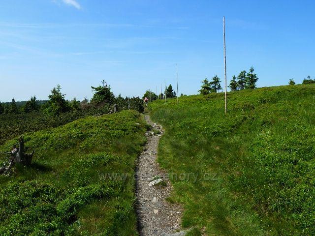 Na trase hřebenovky po zelené TZ mezi Břidličnou horou a Pecným