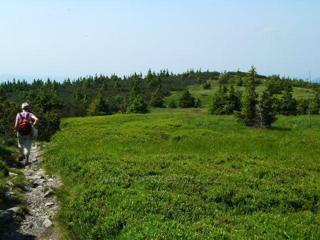 Kamenitá stezka po zelené TZ od Pecného ke Ztraceným kamenům