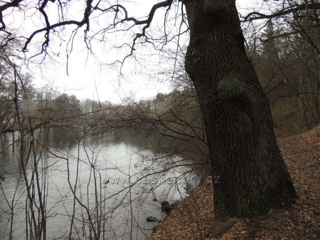 Chomutov rybník u Hřebíkárny