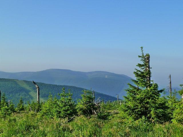 Pohled na Mravenečník a větrné elektrárny z cesty na Vřesovou studánku