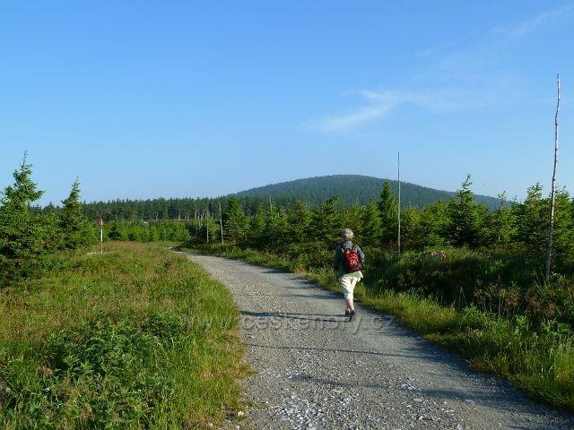 Pohodlná cesta k Vřesové studánce