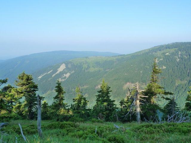 Pohled na protější  hřeben Klínové hory a Spáleného vrchu z cesty na Vřesovou studánku
