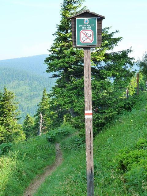 Cesta do sedla Pod Vřesovkou