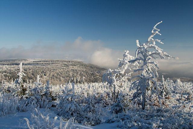 Zmrzlá krajina