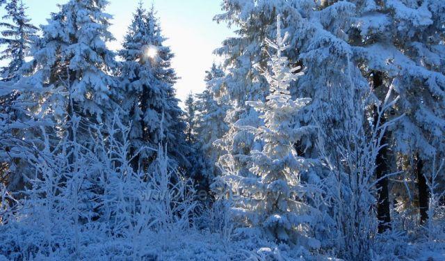 Klínovec-mrazivé ráno