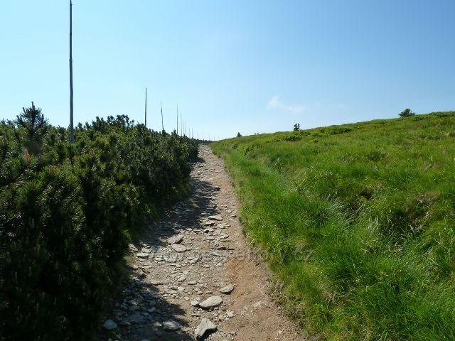 Trasa sestupové cesty z Keprníku na Šerák