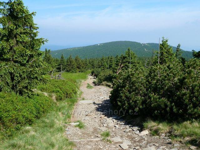 Cesta z Keprníku na Šerák.Na horizontu vpravo je vidět chata Jiřího,vlevo pak horní stanice lanovky z Ramzové na Šerák