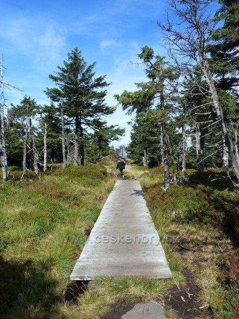 Sestup z vrcholu Vozky přes mokřad je zabezpečen panelovým chodníkem