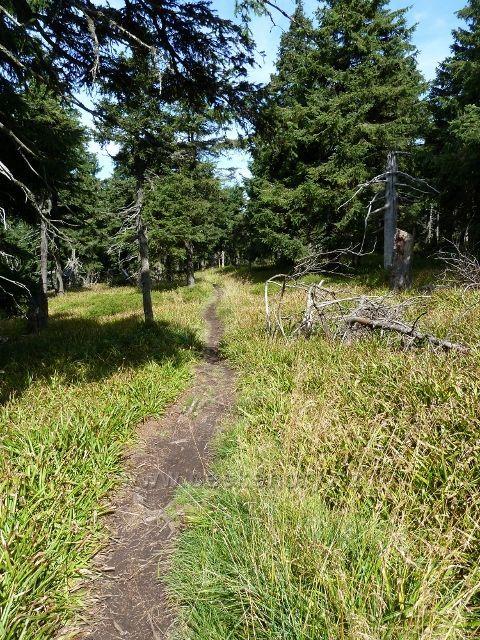 Stezka po zelené TZ z Vozky nad Hášovo chatou