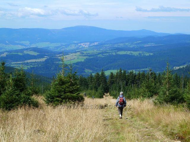 Sestupová cesta po žluté TZ k Volské louce otevírá pohled na pásmo Kralického Sněžníku a Rychlebských hor