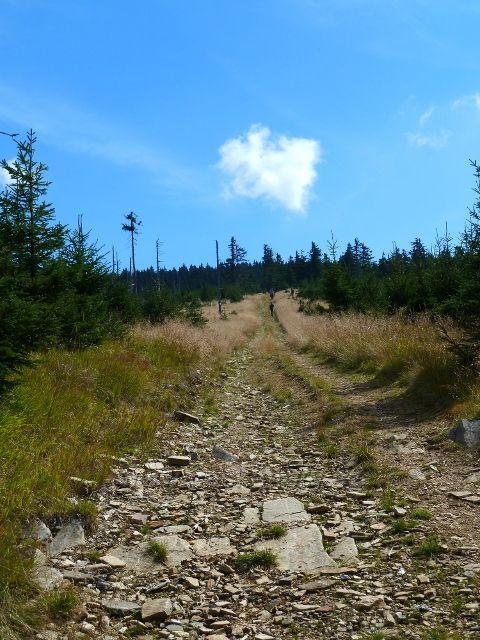 Sestupová cesta po žluté TZ k Volské louce - zpětný pohled