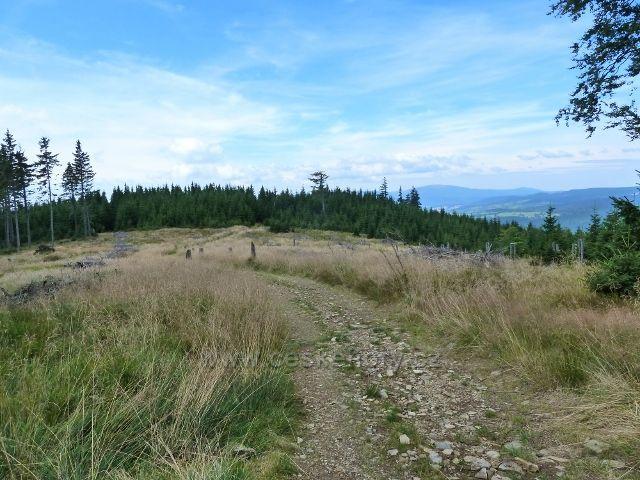 Cesta po žluté TZ k Volské Louce poskytuje zajímavé výhledy do kraje