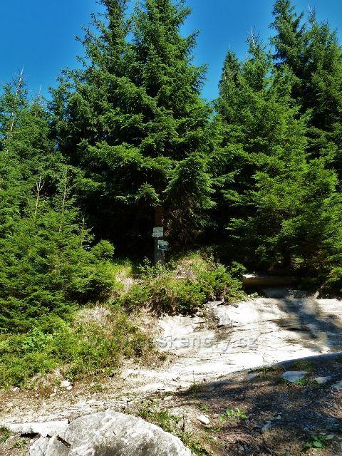 Rozcestí Potok Hrčava na zelené TZ
