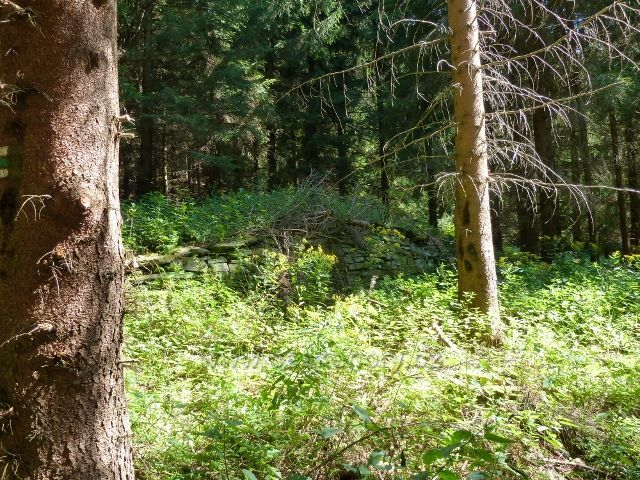 Zbytky po bývalé lesní železnici z Josefové do Aloisova