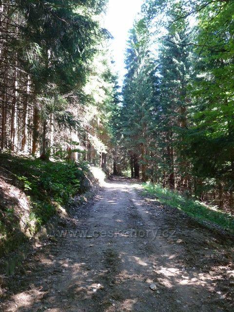 Tudy vedla trasa bývalé lesní železnice z Josefové do Aloisova