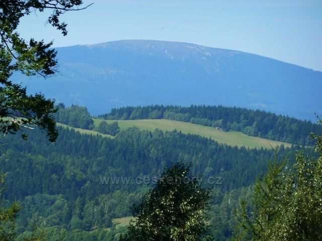 Pohled na Kralický Sněžník z cesty po zelené TZ k hájovně Banjaluka