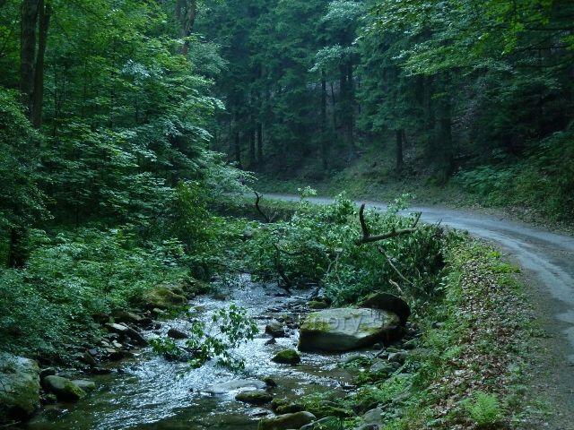 Silnička z Branné k Banjaluce kopíruje tok říčky Branné
