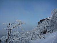 Skály-Sněžník