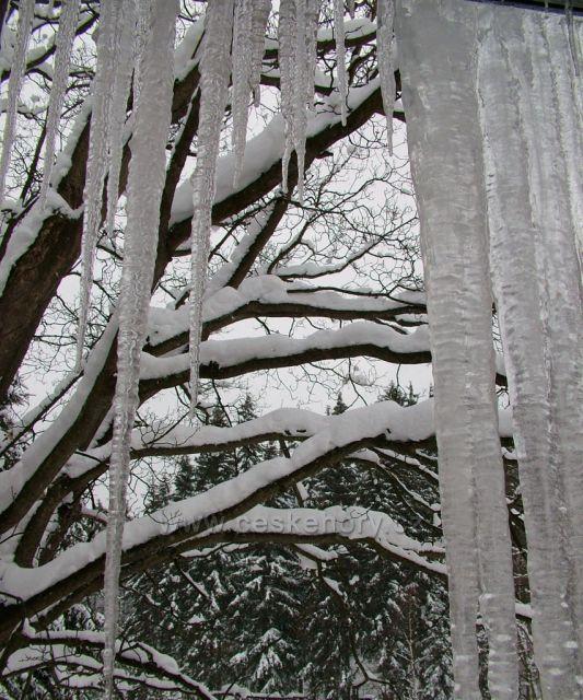 Kořenov