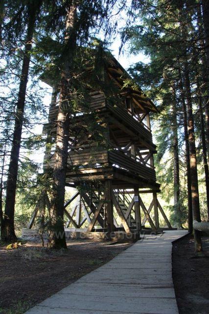Vyhlídková věž Jezerní slať