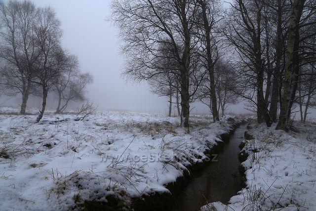 Mlhy u Starého rybníka
