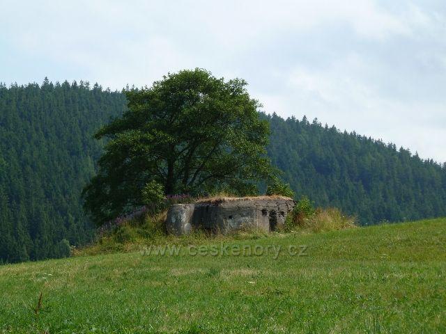 Bunkr pod vrchem Kamenáč mezi Šanovem a Dolní Orlicí