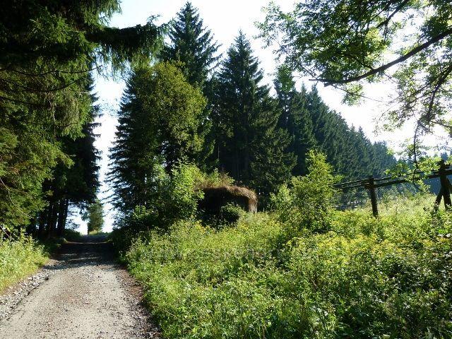 """Bunkr u cesty po zelené TZ pod turistickým rozcestníkem  """"Nad Splavem"""""""