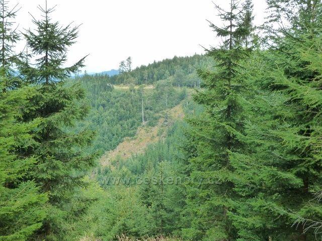 Horní část údolí Vražedného potoka a cyklostezka 6208 pod Obřími skalami