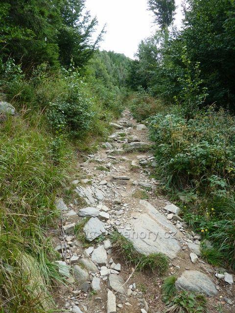 Kamenitý chodník po zelené TZ prudce stoupá až k Obřím skalám
