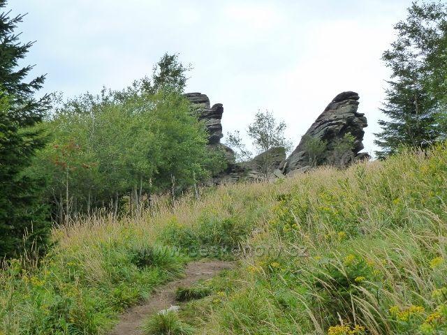 Poslední úsek choodníku po zelené TZ k Obřím skalám se mění v úzkou pěšinu