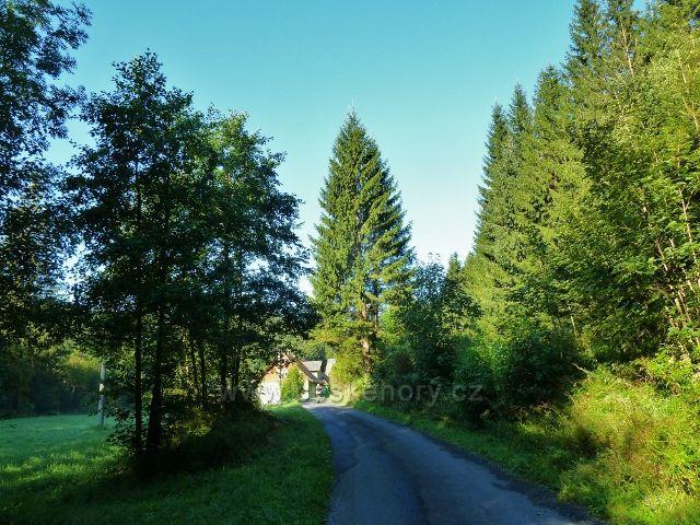 Adolfovice - silnička v údolí Javořického potoka v Mlýnkách