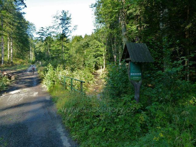 Javořický potok u silničky z Adolfovic na Javořík
