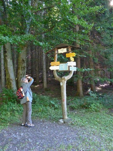 Turistický rozcestník Javořík